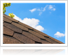 Learn about the types of roofing materials